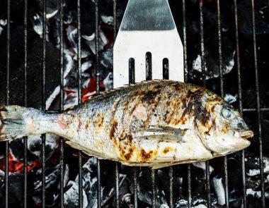 Se régaler des produits de la mer