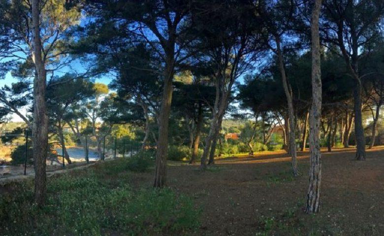 Parc du Capélan