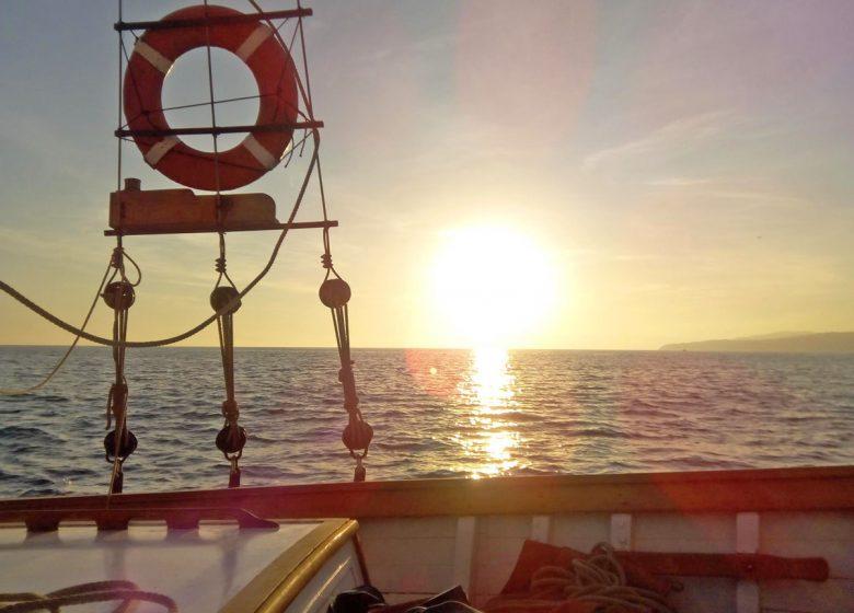 Le Cap des Palmes /  Sorties en Mer avec Skipper